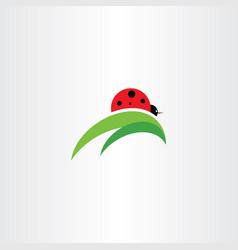 ladybug on leaf logo icon vector image
