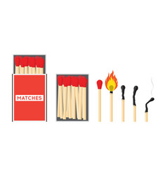 matches set of vector image