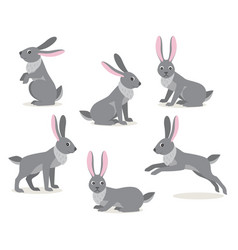Set of cute gray hare in different pose on white vector