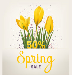 Spring banner with crocus vector