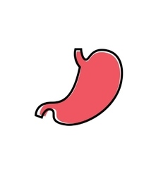 Flat human stomach icon vector image vector image