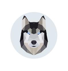 Husky head polygonal style vector