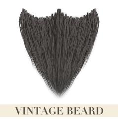 Realistic Black beard vector image
