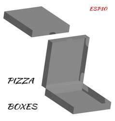 realistic drawing of cardboard box for pizza vector image