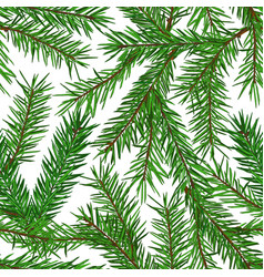 realistic green fir tree branches seamless pattern vector image
