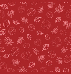 Red leaves and nuts autumn doodle vector