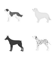 St bernard retrieverdoberman labrador dog vector