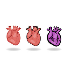 set of human heart icons in flat style vector image