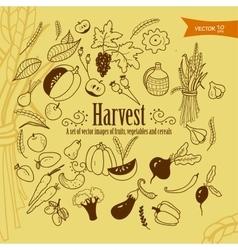 harvest1 vector image