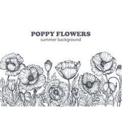 floral backgrounds with hand drawn poppy flowers vector image