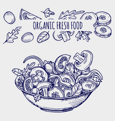 Hand drawn salad bowl and vegetables healhty food vector