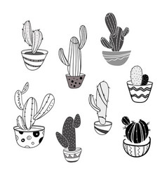 set of indoor cacti in pots collection of vector image