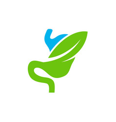 stomach with leaf logo design concept healthy vector image