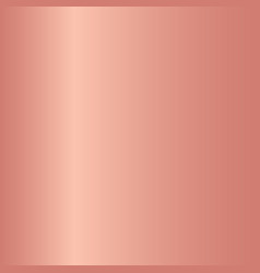 pink rose gradients collection for design vector image vector image