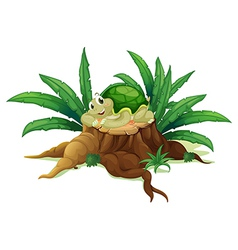 A turtle above trunk vector