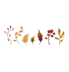 Autumn watercolor style hand drawn seasonal vector