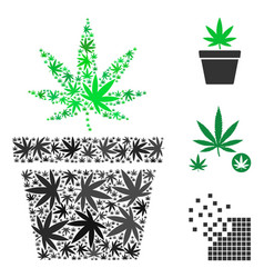 Cannabis pot composition of marijuana vector