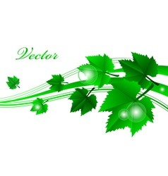 green frame with leaves vector image vector image