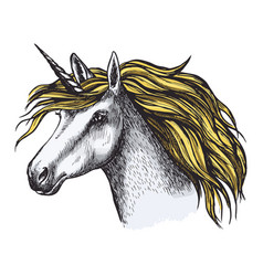 Unicorn horse fairy tale animal head sketch vector