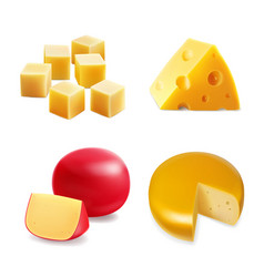 cheese realistic collection set vector image
