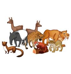 Group of wild animals vector