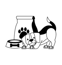 Pet shop related vector