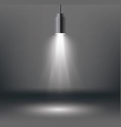 scene illumination effects with spotlight vector image