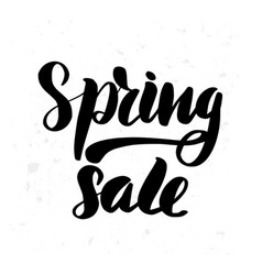 spring sale lettering greeting card vector image