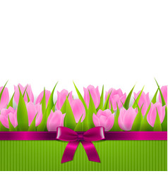 tulip border vector image