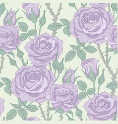 violet roses pattern vector image