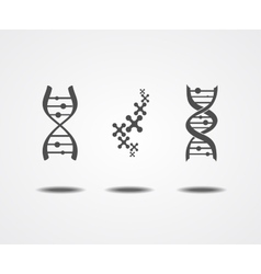 Dna icons set vector image