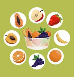 healthy fruit bowl diet eating vector image