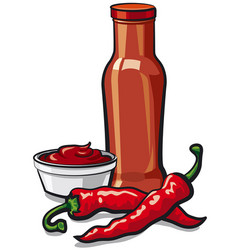 chilli tomato spicy ketchup vector image