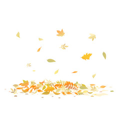 Fallen leaves isolated vector