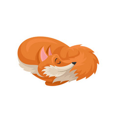 Flat icon of sleeping curled up fox forest vector