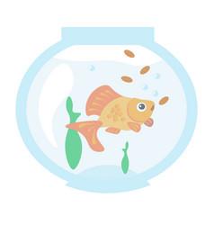 golden fish in the aquarium vector image