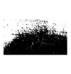 grunge black and white texture vector image