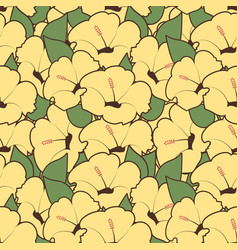 seamless pattern hibiscus flowers floral vector image