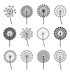Set of stylized dandelions vector