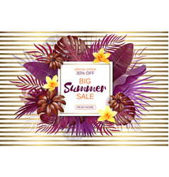 Summer sale background with exotic leaves and vector