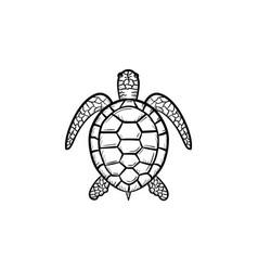 Turtle hand drawn sketch icon vector