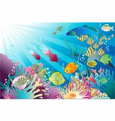 under the sea again vector image