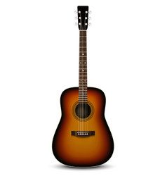 Realistic acoustic guitar vector image