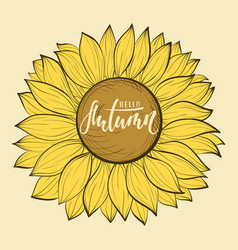 beautiful vintage sunflower flower hello autumn vector image vector image