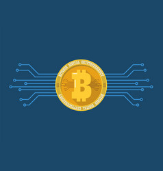 bitcoin digital cryptocurrency vector image