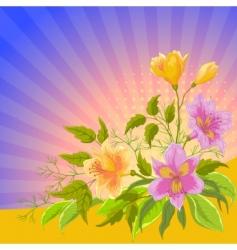 Flower background alstroemeria vector