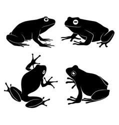 Hand drawn silhouette frog vector