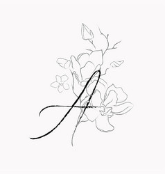 Handwritten line drawing floral logo monogram a vector