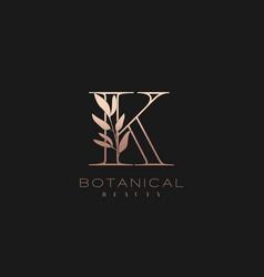 Letter k botanical elegant minimalist signature vector