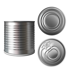 preserves metal can or tin 3d vector image